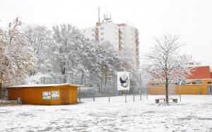 Schulhof-Winter