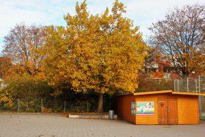 Ausleihe Herbst