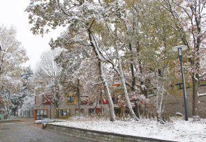 hinterm-Neubau-Winter-1