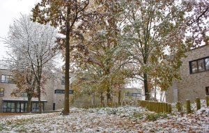 hinterm-Neubau-Winter-2