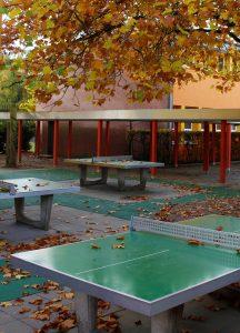 Tischtennis Herbst